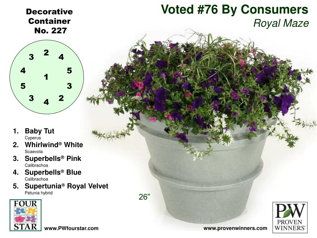 Voted #76 By Consumers