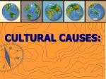 cultural causes47