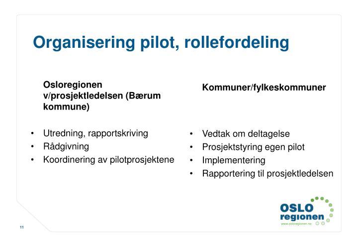 Osloregionen v/prosjektledelsen (Bærum kommune)
