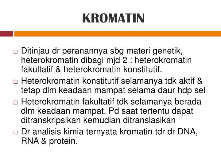 KROMATIN