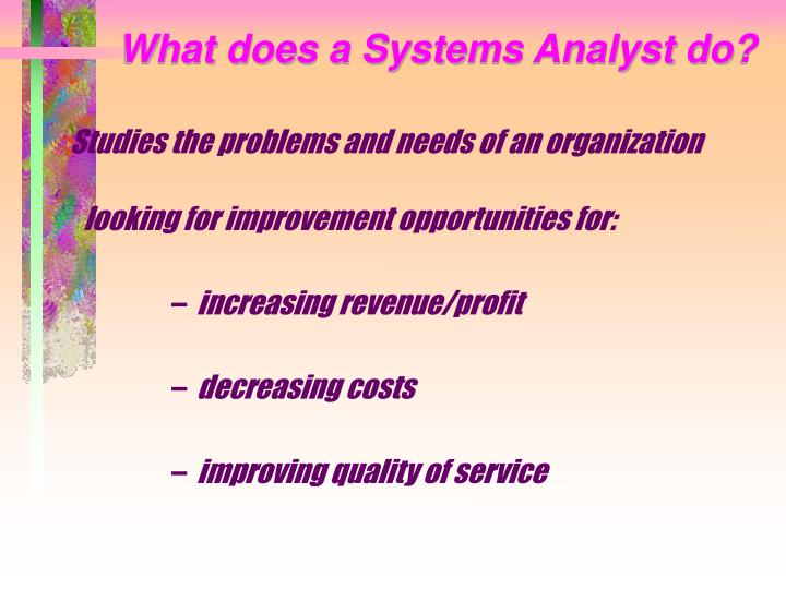 What does a Systems Analyst do?