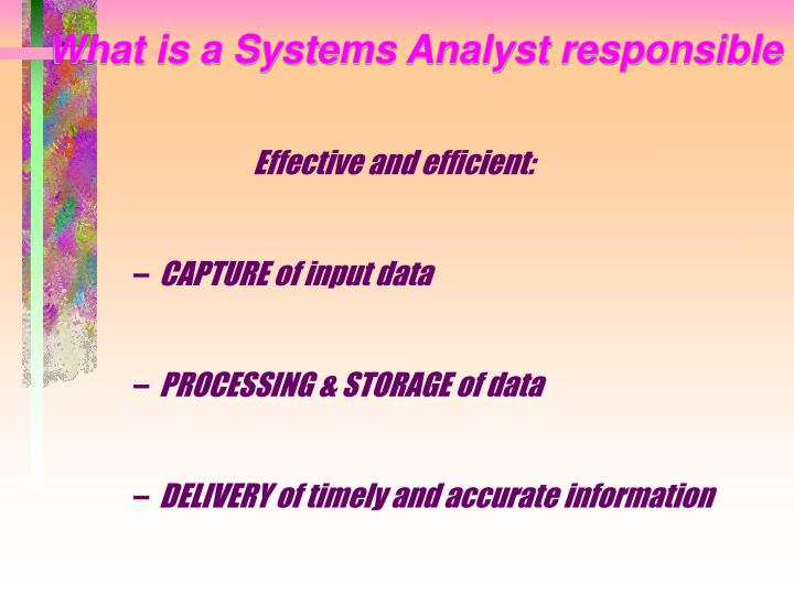 What is a Systems Analyst responsible for?
