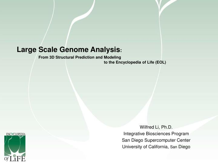 Large Scale Genome