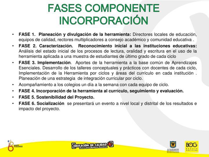 FASES COMPONENTE  INCORPORACIÓN