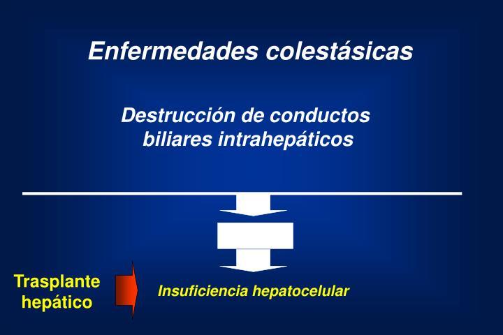 Enfermedades colestásicas