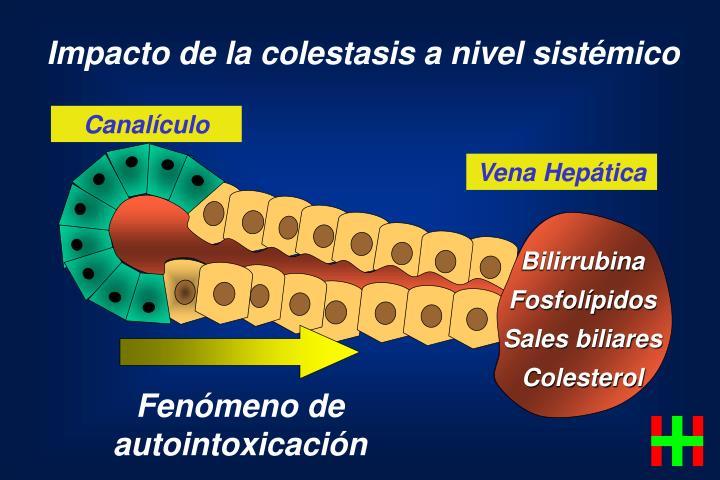 Impacto de la colestasis a nivel sistémico