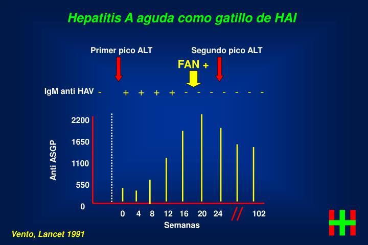 Hepatitis A aguda como gatillo de HAI