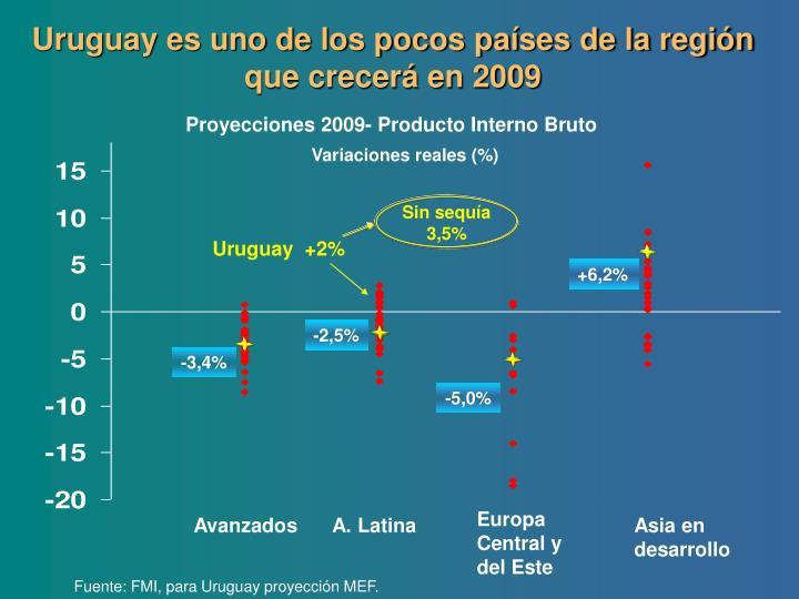 Uruguay es uno de los pocos países de la región que crecerá en 2009