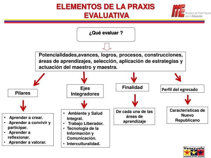 ELEMENTOS DE LA PRAXIS