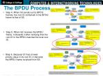 the bpdu process2
