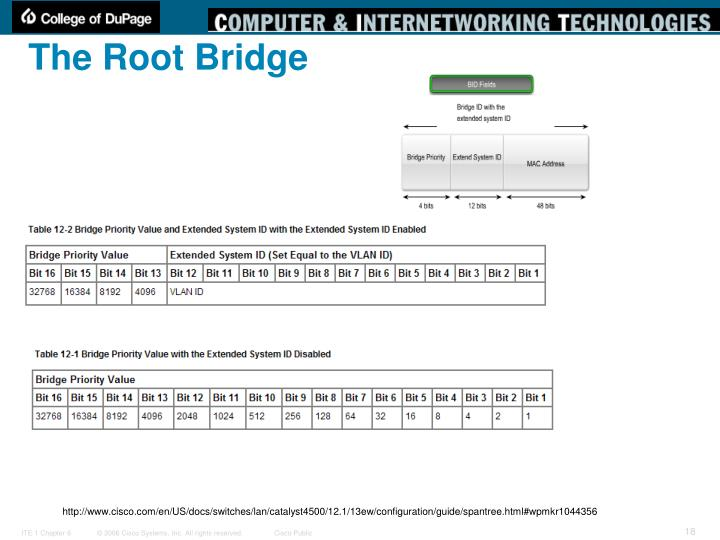 The Root Bridge