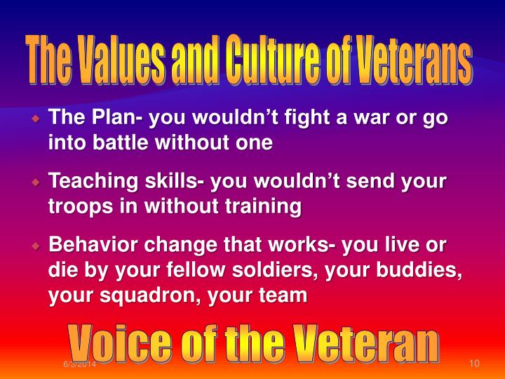 The Values and Culture of Veterans
