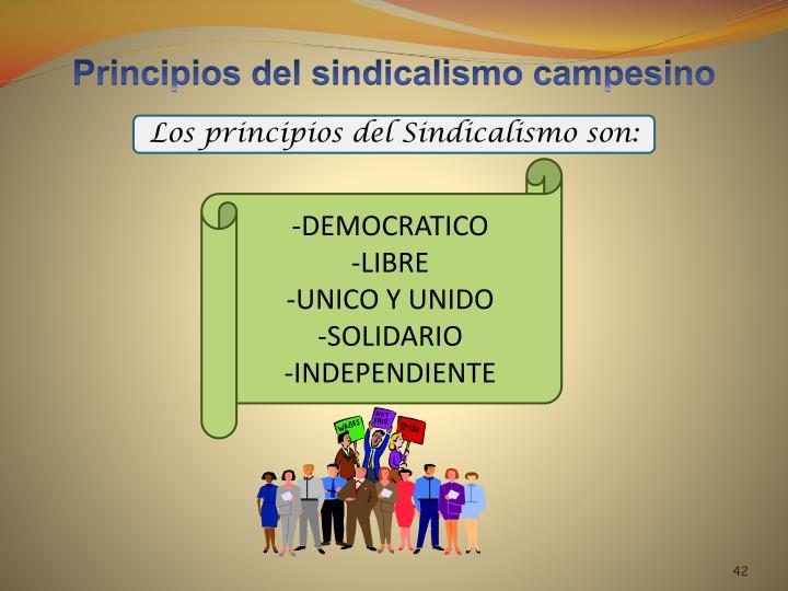 Principios del sindicalismo campesino
