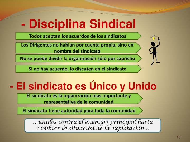 - Disciplina Sindical
