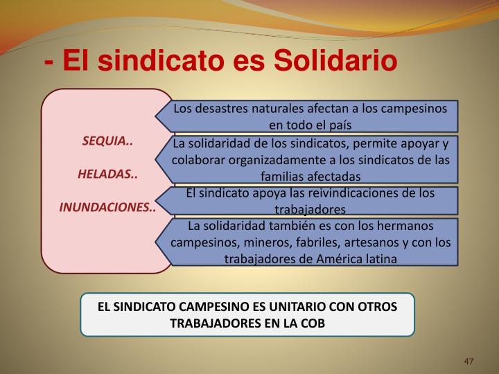 - El sindicato es Solidario