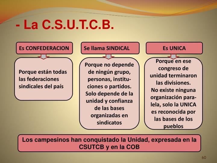 - La C.S.U.T.C.B.