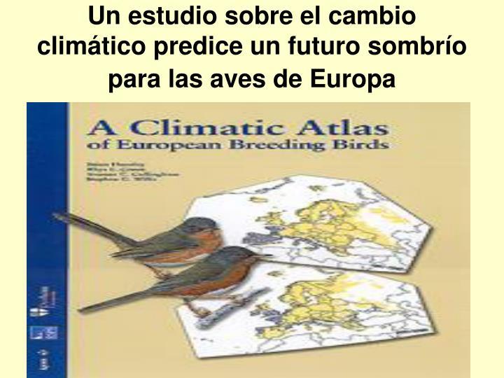 Un estudio sobre el cambio climático predice un futuro sombrío para las aves de Europa