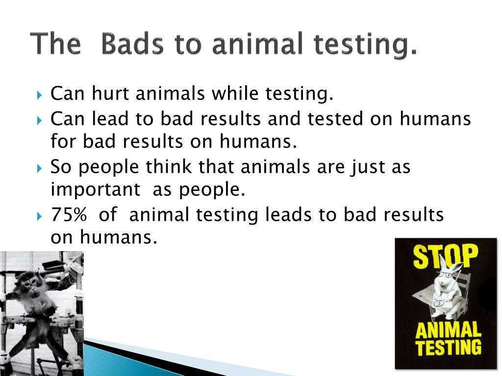 The  Bads to animal testing.