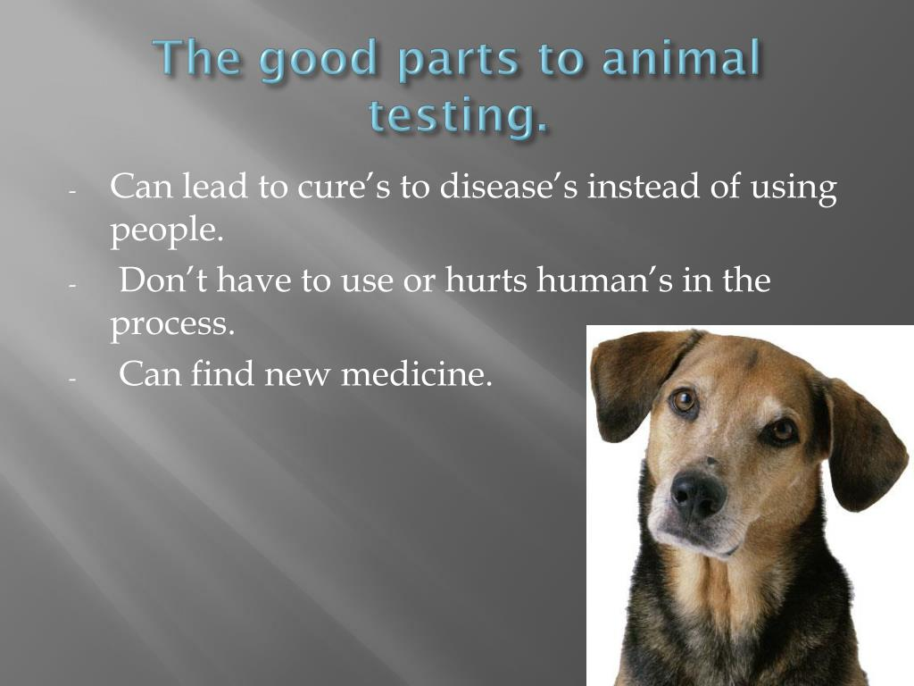 The good parts to animal testing.