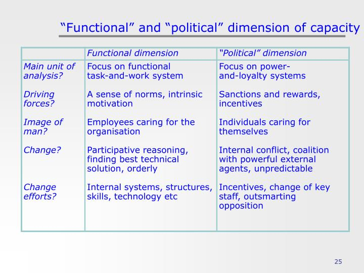 """Functional"" and ""political"" dimension of capacity"