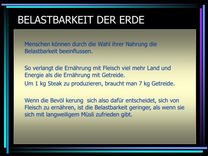 BELASTBARKEIT DER ERDE