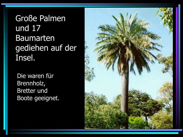 Große Palmen und 17  Baumarten gediehen auf der Insel.