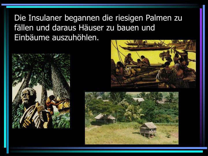 Die Insulaner begannen die riesigen Palmen zu fällen und daraus Häuser zu bauen und Einbäume auszuhöhlen.