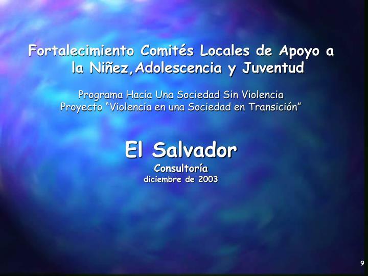 Fortalecimiento Comités Locales de Apoyo a la Niñez,Adolescencia y Juventud