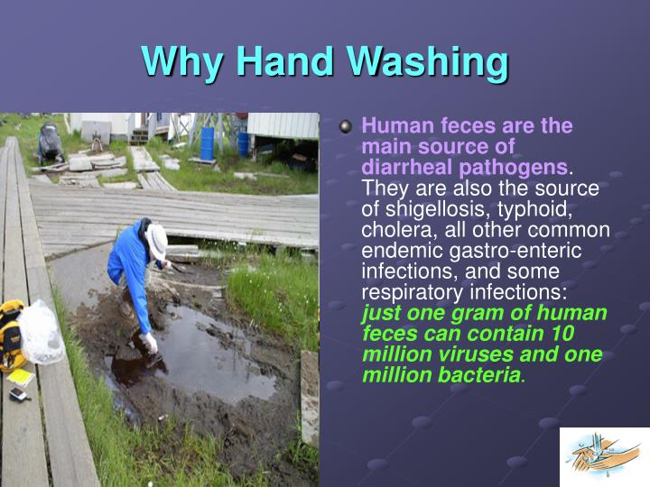 Why Hand Washing