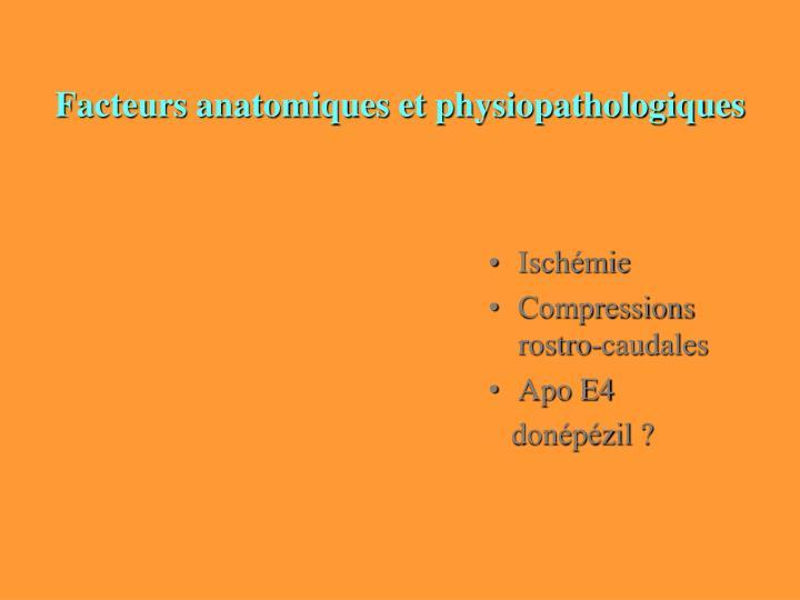 Facteurs anatomiques et physiopathologiques