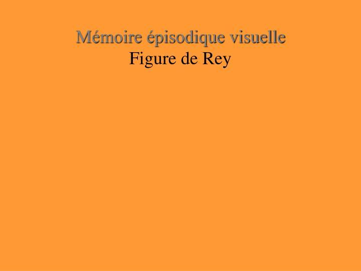 Mémoire épisodique visuelle