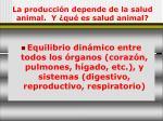 la producci n depende de la salud animal y qu es salud animal