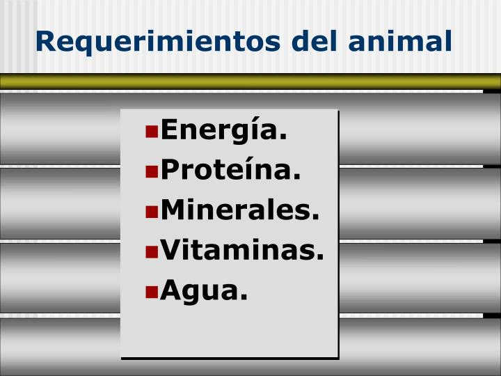 Requerimientos del animal