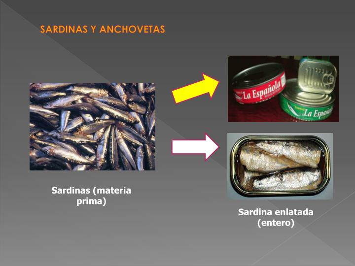 SARDINAS Y ANCHOVETAS