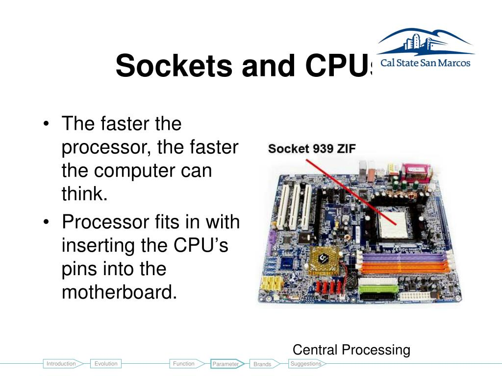 Sockets and CPUs