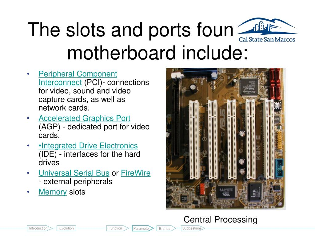 The slots and ports found on a motherboard include:
