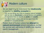 modern culture1