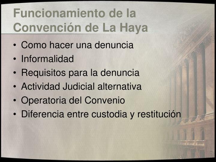 Funcionamiento de la Convención