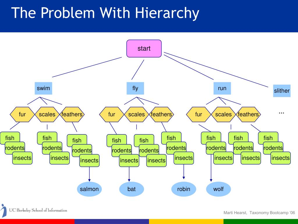 The Problem With Hierarchy