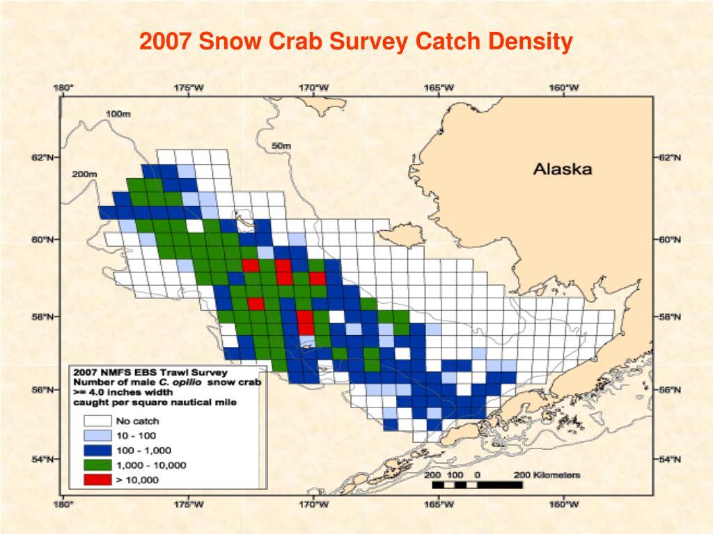 2007 Snow Crab Survey Catch Density