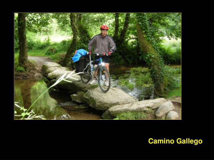 Camino Gallego
