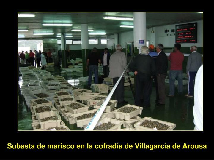 Subasta de marisco en la cofradía de Villagarcía de Arousa