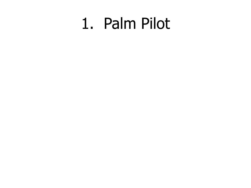 1.  Palm Pilot