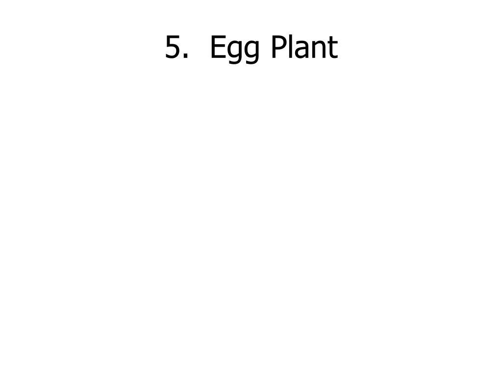 5.  Egg Plant