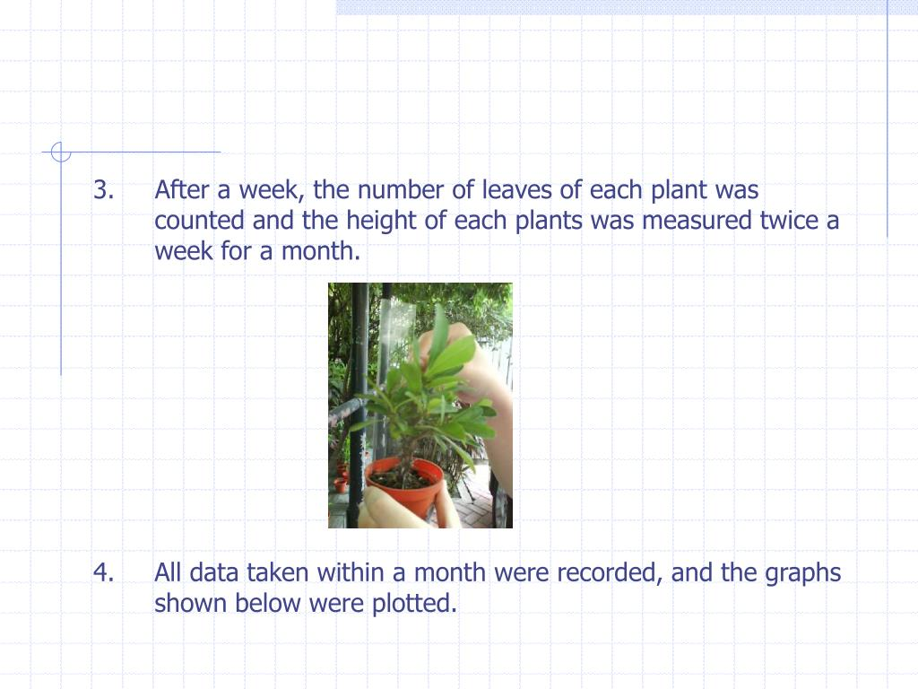 3.     After a week, the number of leaves of each plant was counted and the height of each plants was measured twice a week for a month.