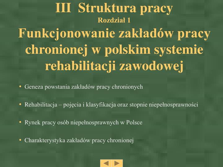 III  Struktura pracy