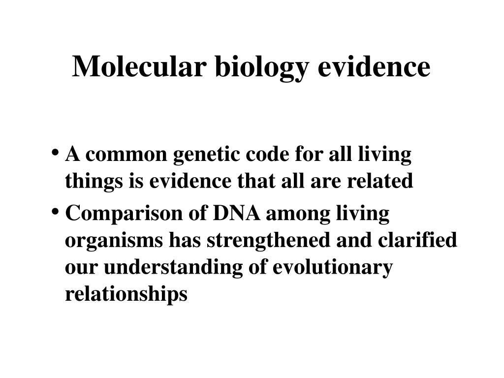 Molecular biology evidence