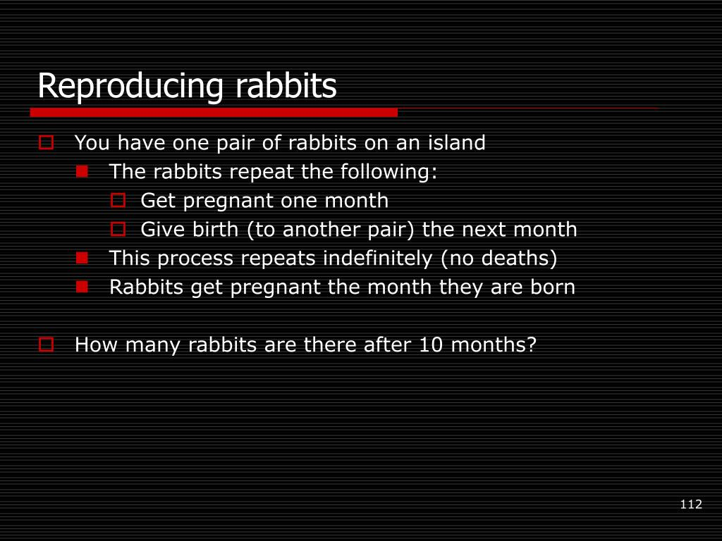 Reproducing rabbits