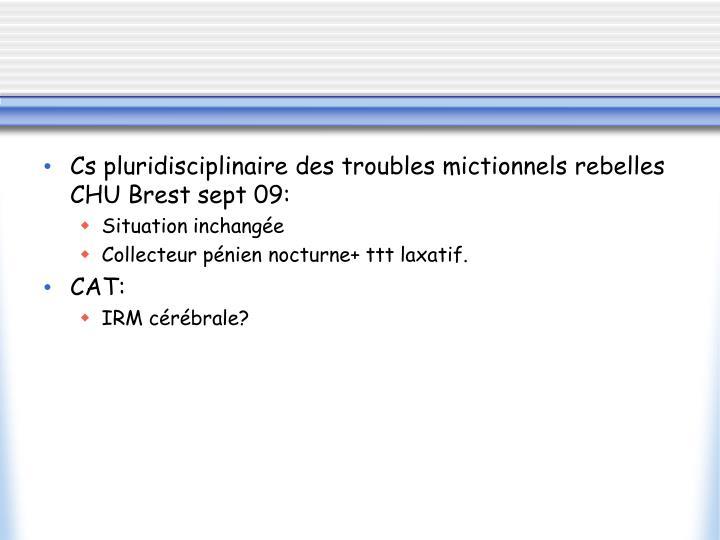 Cs pluridisciplinaire des troubles mictionnels rebelles CHU Brest sept 09: