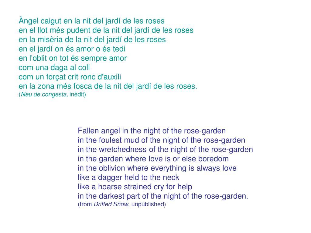 Àngel caigut en la nit del jardí de les roses